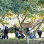 市街地に近い標高約100mの丘陵につくられた美山公園は、広大な敷地にいろいろな施設が充実している